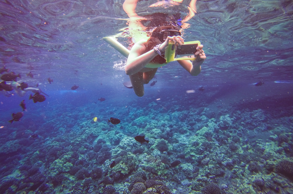 The-Snorkel-Store-Private-Snorkeling-Tours