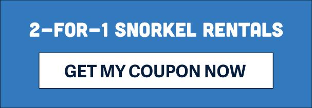 2-for-1 snorkel rentals